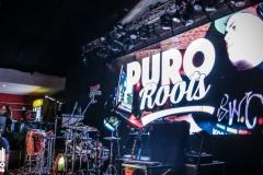 PuroRoots-Urbano-106-41